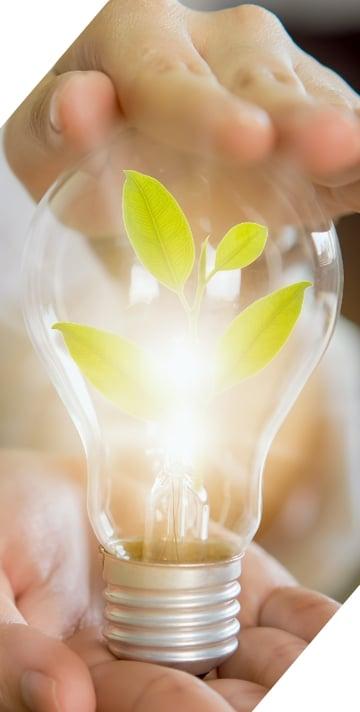 ventajas de ser sostenible para tus clientes